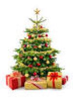 Bildergebnis für weihnachtsbäume